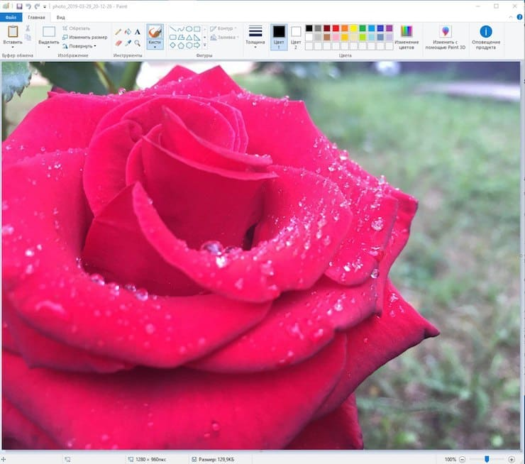 Как изменить размер картинки (фото) в Paint на Windows