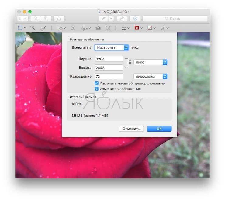 Как изменить размер картинки (фото) на Mac
