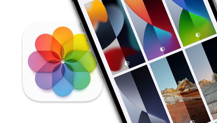Как искать, скачивать и изменять обои на iPhone и iPad