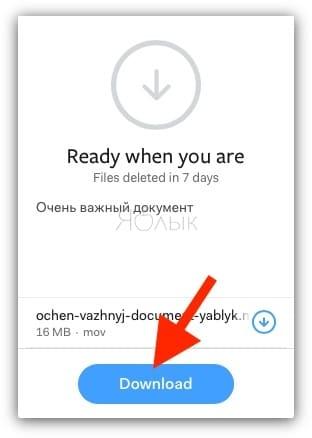 WeTransfer - облачный сервис, позволяющий легко делиться файлами между iPhone, Android, Mac и Windows