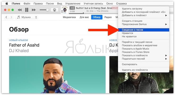 Эквалайзер на Mac (macOS), или как настроить качество звука в iTunes на Mac