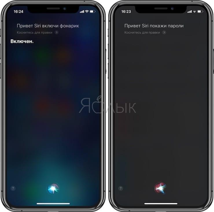 Siri: фонарик, пароли и другое