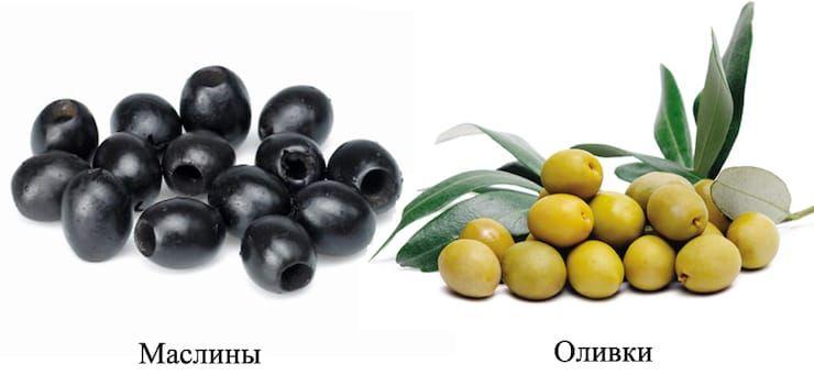 Чем отличаются оливки от маслин и какая от них польза?