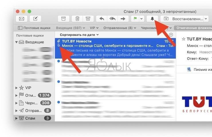 Отключение уведомлений в Почте macOS