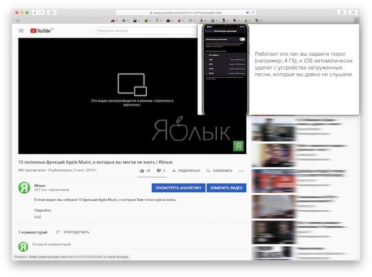 «Картинка в картинке» в Safari в macOS
