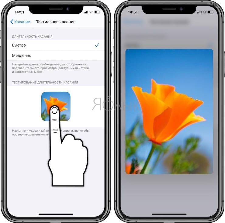 Haptic Touch и 3D Touch на iPhone