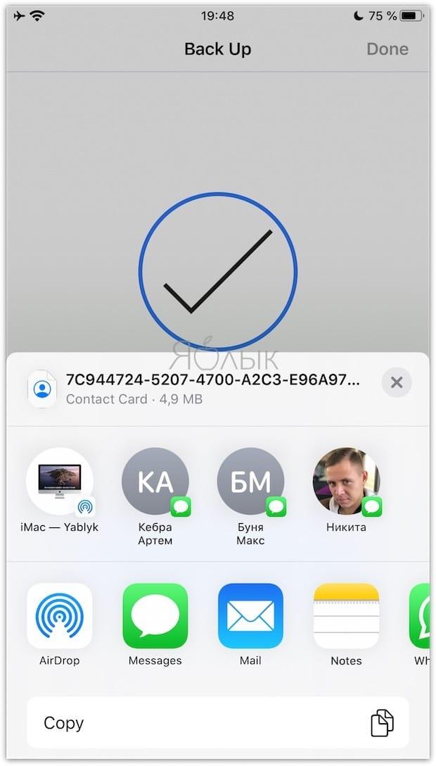 Как скопировать (перенести) контакты с iPhone на компьютер, используя приложения