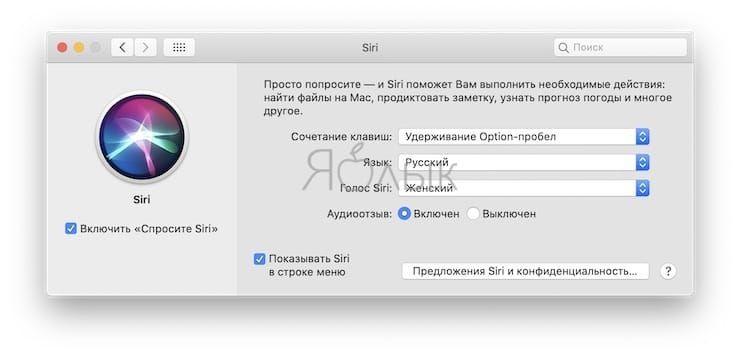 Полезные команды Siri для компьютера Mac (macOS) на русском языке