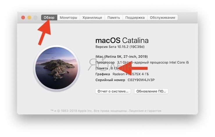 Как узнать, сколько оперативной памяти установлено на Mac
