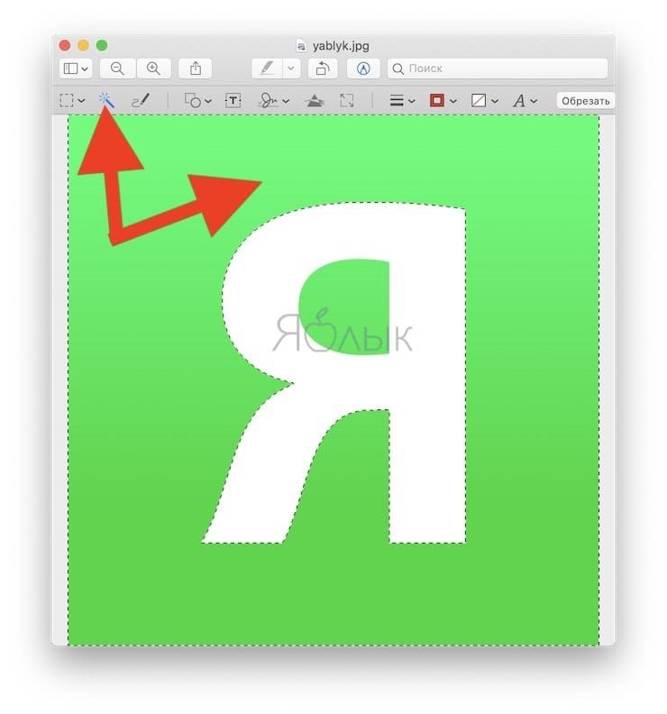 Как сделать прозрачный фон у изображения на Mac (macOS) с помощью программы Просмотр