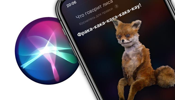 Почему на вопрос «Что говорит лиса?» Siri отвечает именно так