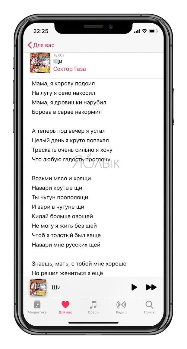 Как смотреть (открыть) тексты песен из Apple Music на iPhone или iPad