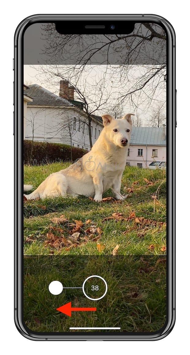 Как делать серийную съемку фото на iPhone