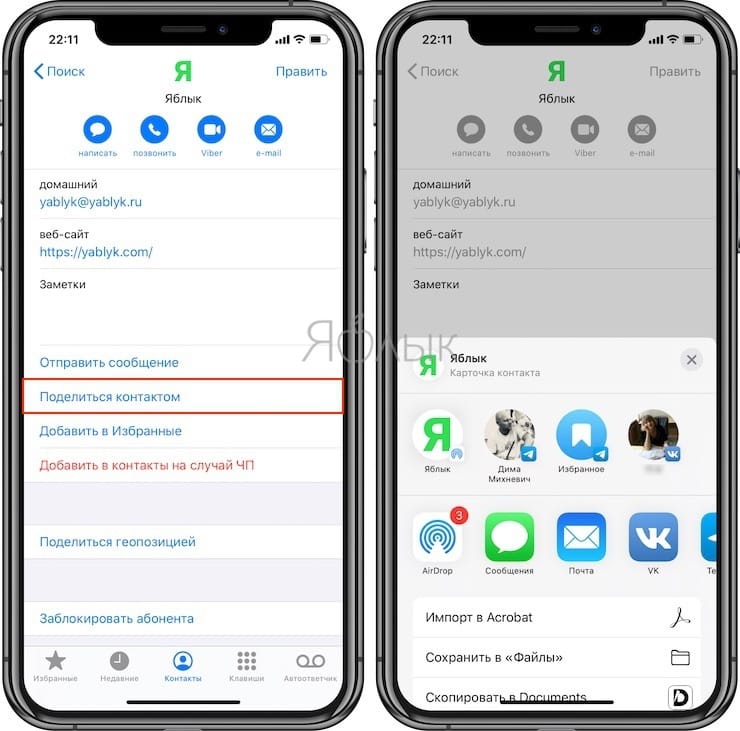 How to share a contact on iPhone