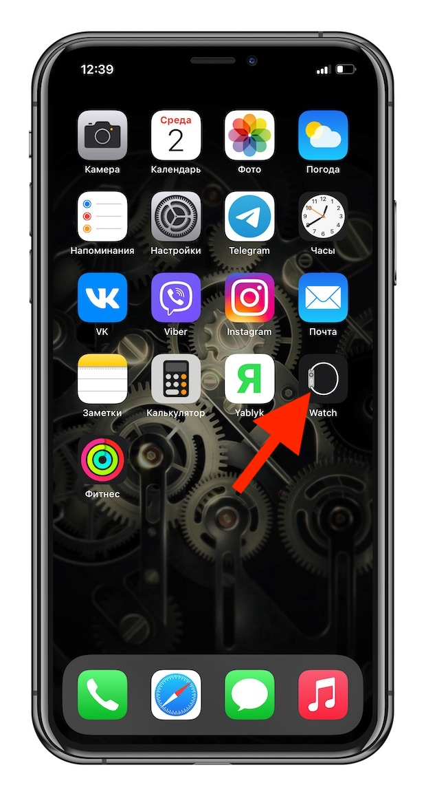 How to take a screenshot (screenshot) on Apple Watch