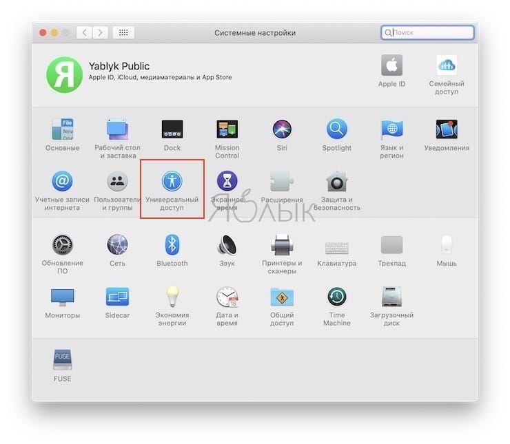 Универсальный доступ в Системных настройках Mac