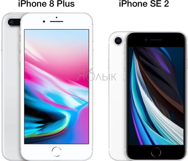 Чем iPhone SE 2 внешне отличается от iPhone 8 / 8 Plus