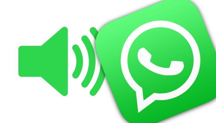 Как узнать по звуку, от кого (из какого чата) пришло сообщение WhatsApp