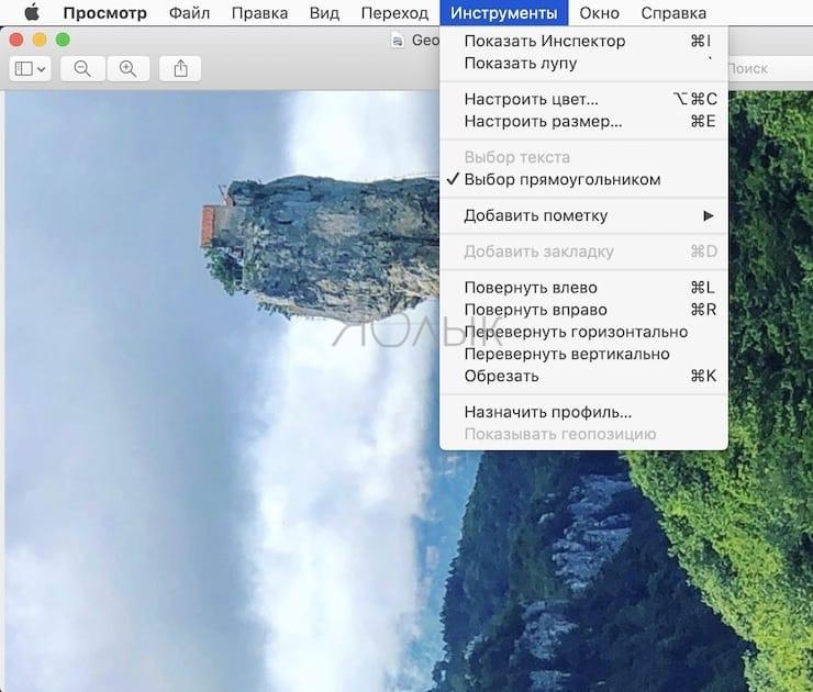 Как повернуть картинку (фото) на Mac в приложении «Просмотр»