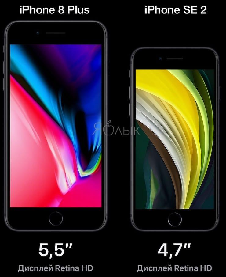 Экран iPhone SE 2 и iPhone 8 / 8 Plus