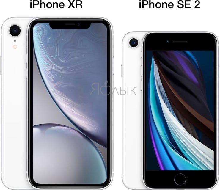 Размеры и вес iPhone SE 2 и iPhone XR