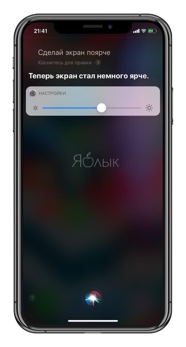 Полезные команды Siri для iPhone на русском языке: яркость дисплея