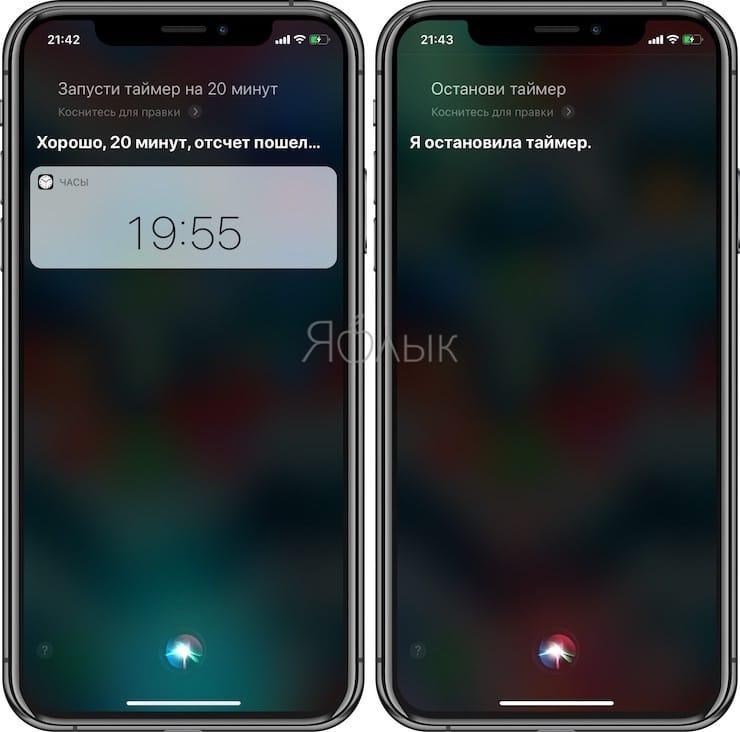 Полезные команды Siri для iPhone на русском языке: таймер
