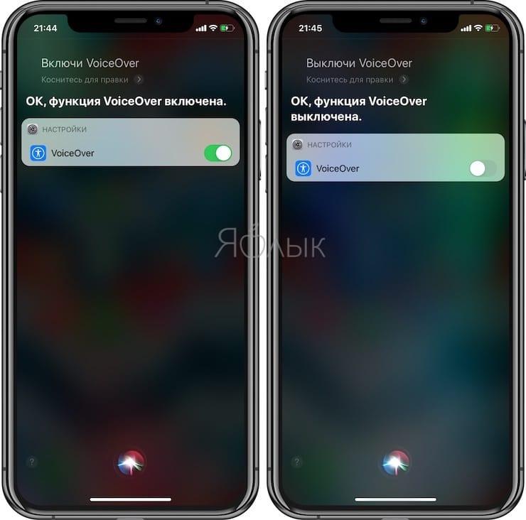 Полезные команды Siri для iPhone на русском языке: Voice Over