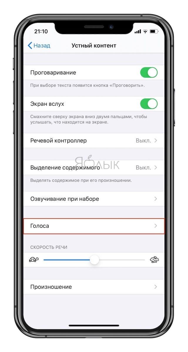 Как включить проговаривание (чтение вслух) текста на iPhone и iPad