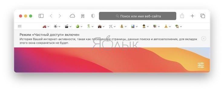 Как всегда запускать Safari с новым окном частного доступа?