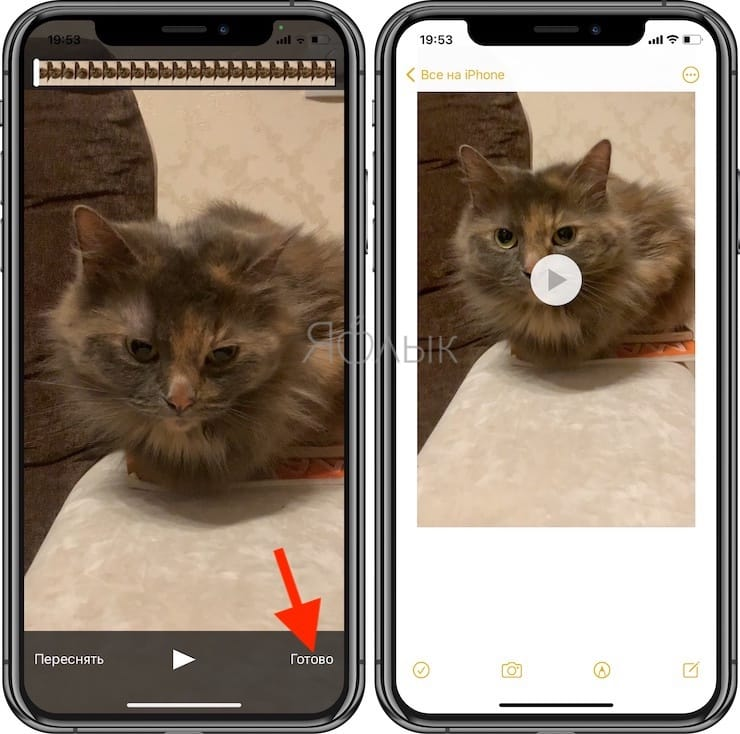Как снять видео или фото прямо в заметке на iPhone или iPad