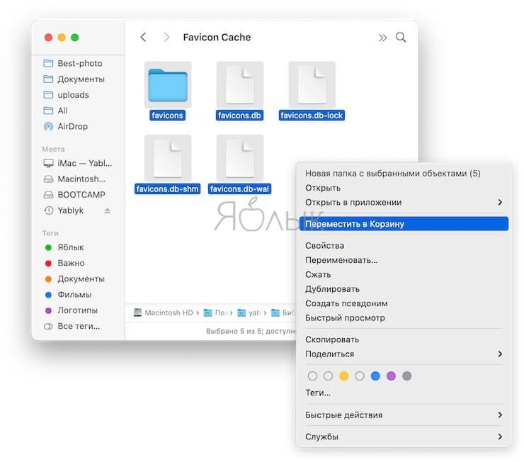 Не обновляются значки веб-сайтов (фавиконы) в Safari на Mac: как исправить?