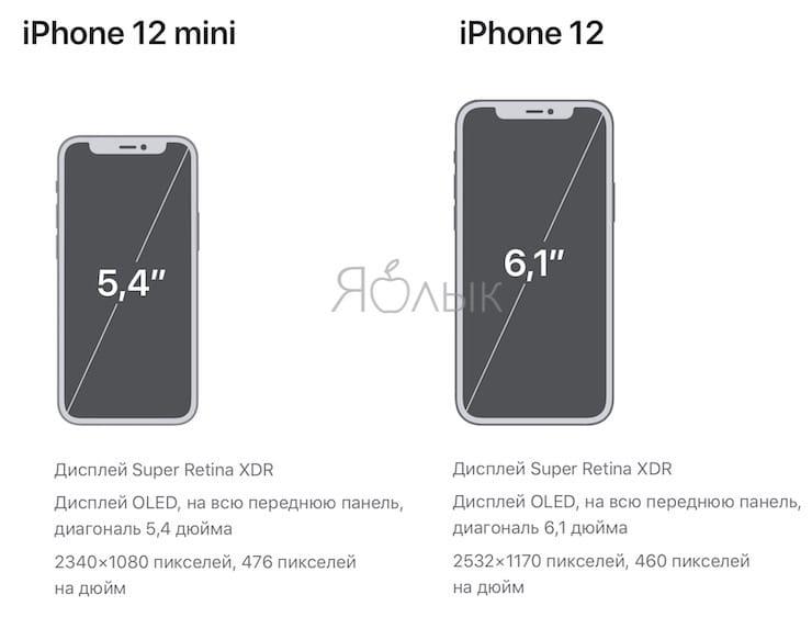 Сравнение размеров дисплея iPhone 12 и iPhone 12 mini