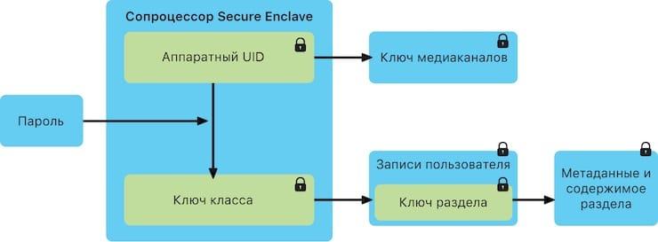 Secure Enclave на Mac