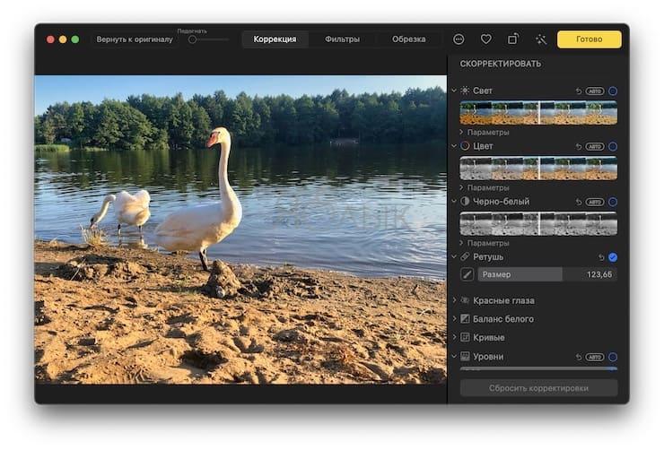 Как удалить человека или предмет с фотографии в приложении Фото на Mac