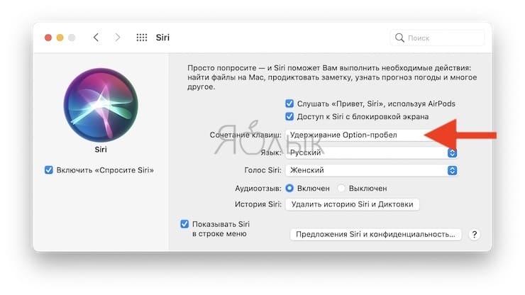 Горячие клавиши для вызова Siri на Mac