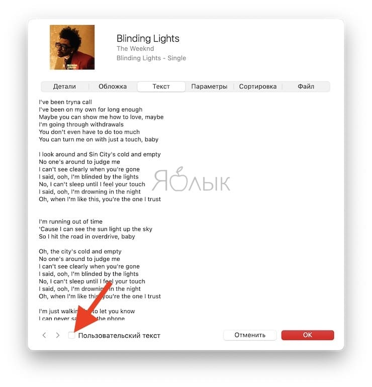 Как редактироватьтекст песни вприложении Музыка на Mac