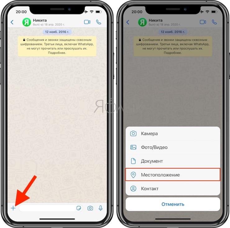 Как поделиться геопозицией (местоположением) в WhatsApp на iPhone