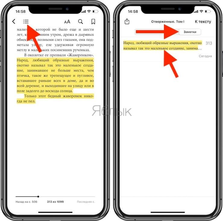 Apple Книги – лучшая читалка книг в формате ePub для iPhone