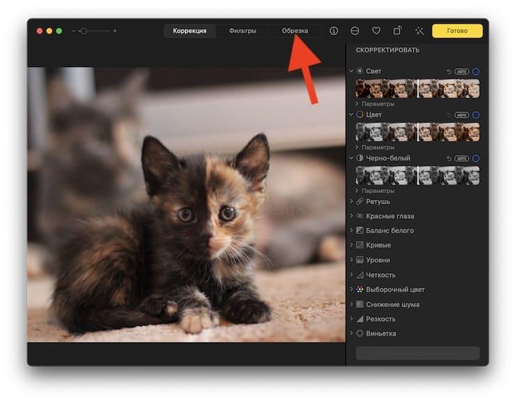 Как быстро обрезать (кадрировать) фото на Mac