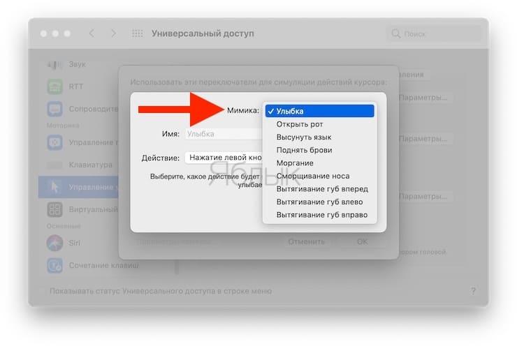 Как управлять компьютером Mac с помощью движений головы и мимики