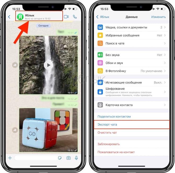 Как переносить чаты из WhatsApp в Telegram?