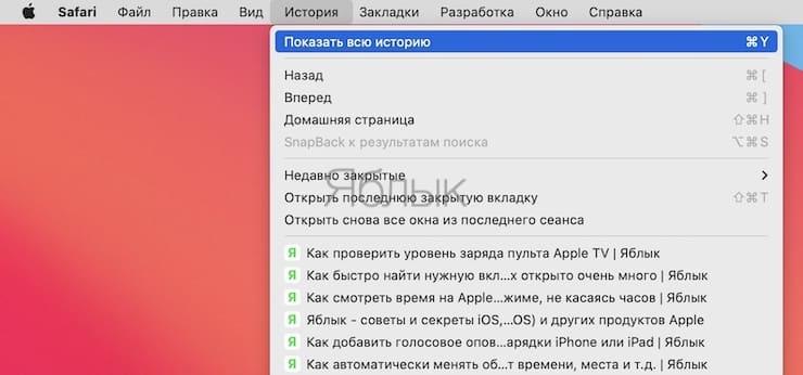 Удаление отдельных страниц истории в Safari на macOS