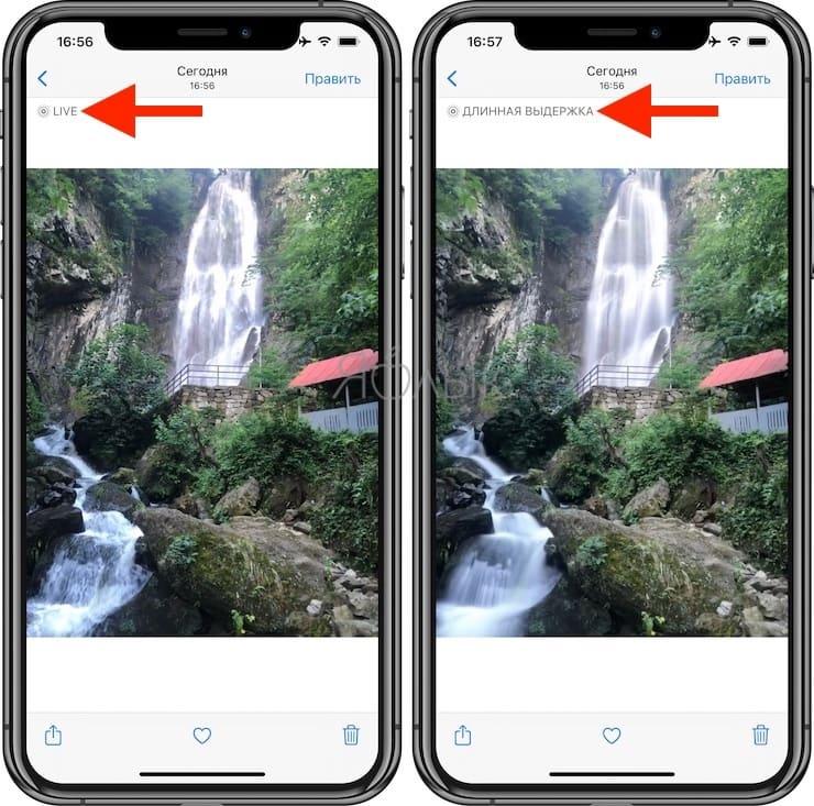 Как передать Live Photos с iPhone на iPhone или iPad