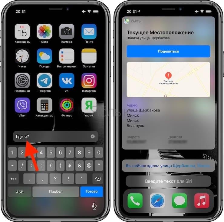 Как общаться с Siri на iPhone и iPad текстом (без голосовых команд)