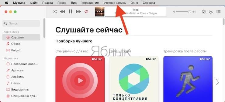 Как включить Медиатеку Apple Music на компьютере (Mac или Windows)