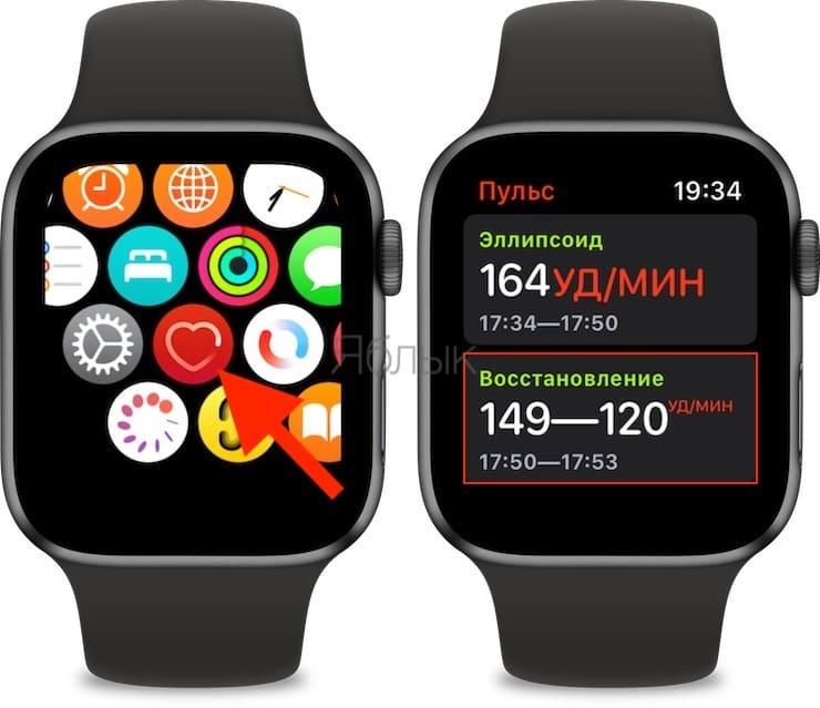 Восстановление пульса на Apple Watch: что это?