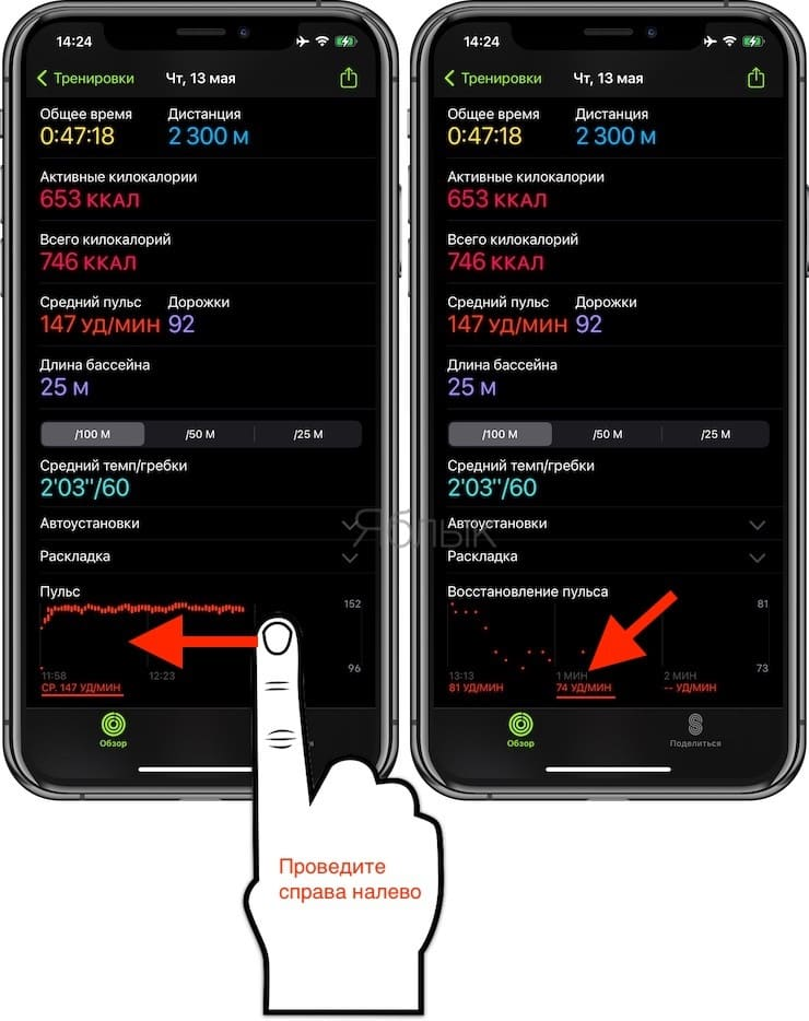 Восстановление пульса: что это, какая норма и как смотреть на Apple Watch и iPhone