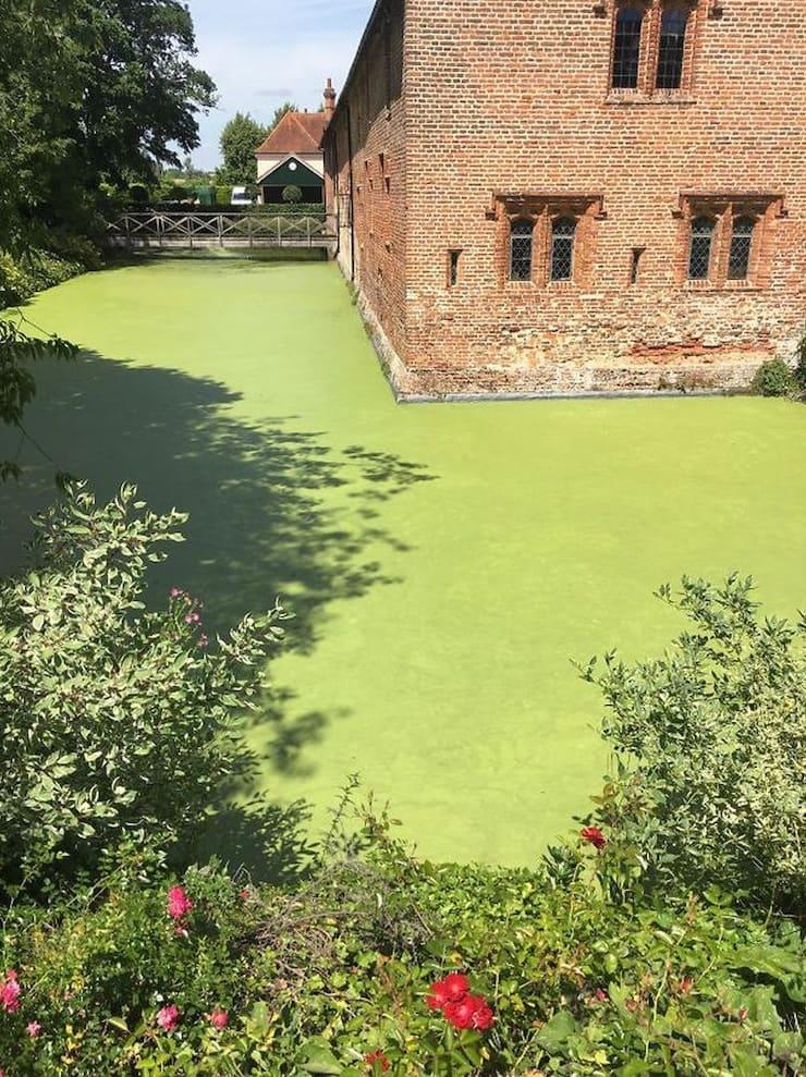 Зеленый бетон