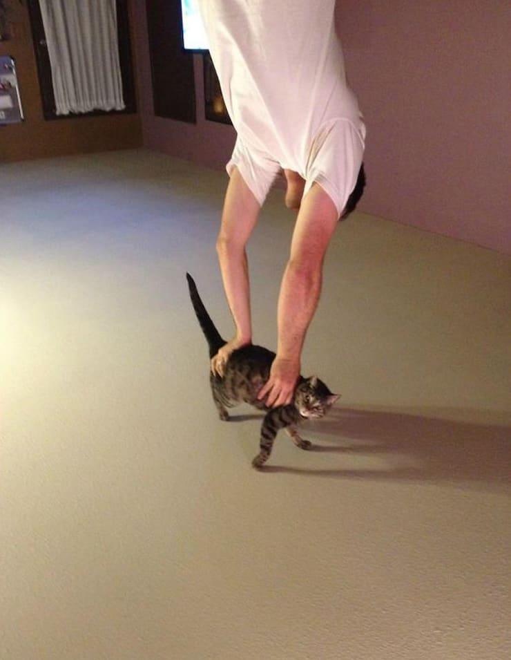 Кошка-подставка или стойка на руках
